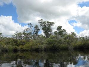 Goodga River
