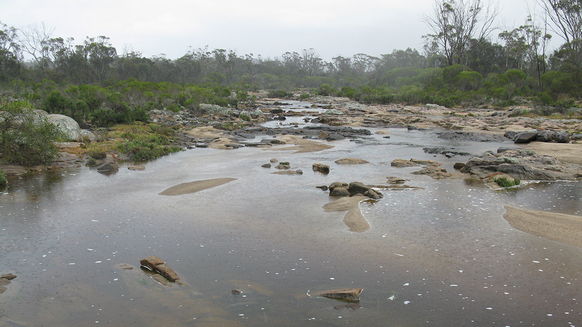 Fitzgerald River