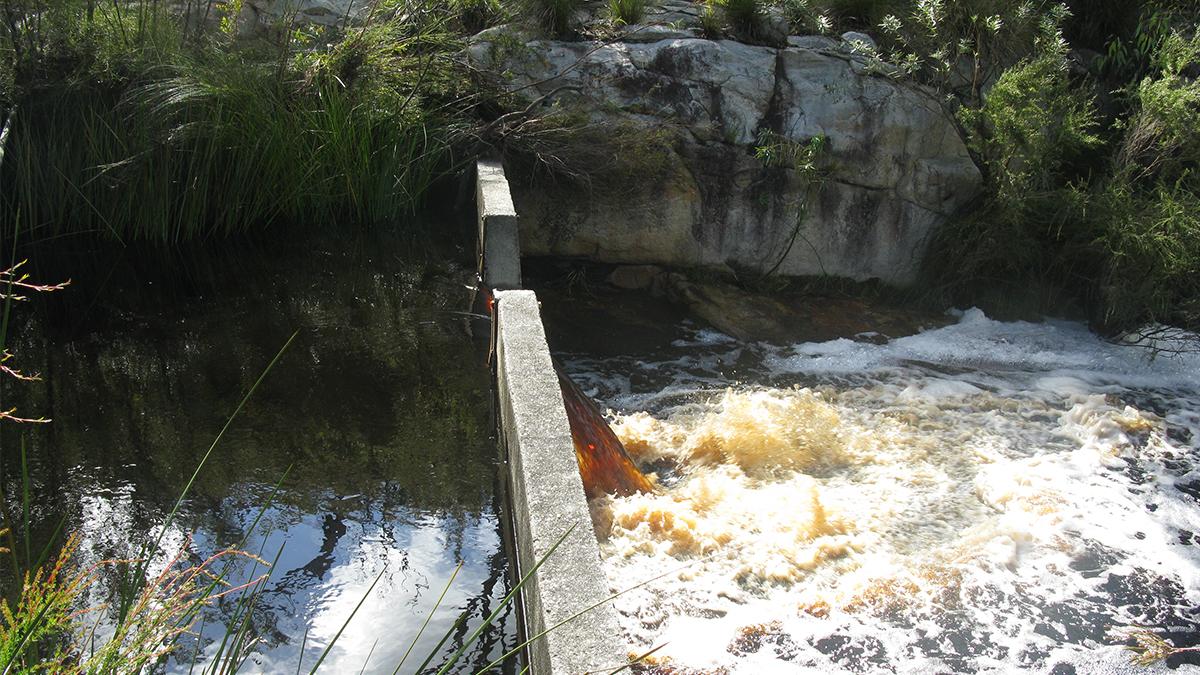 Angove River
