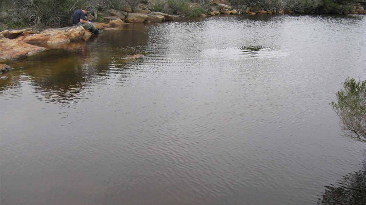 Hamersley River