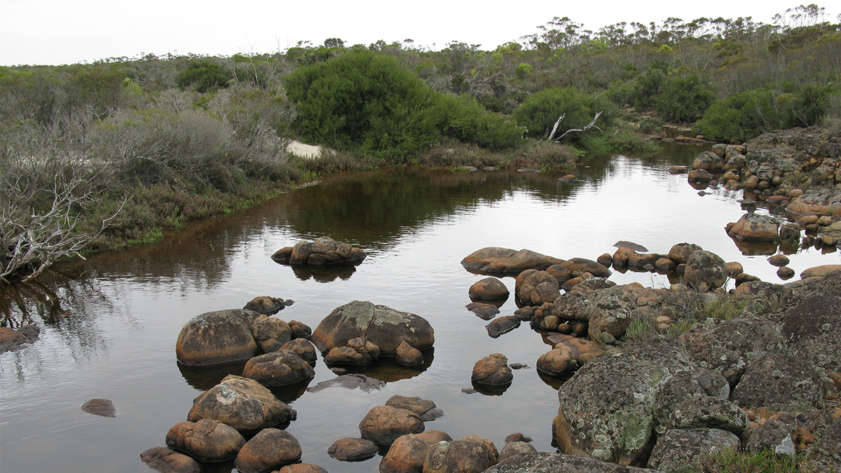 Hamersley River