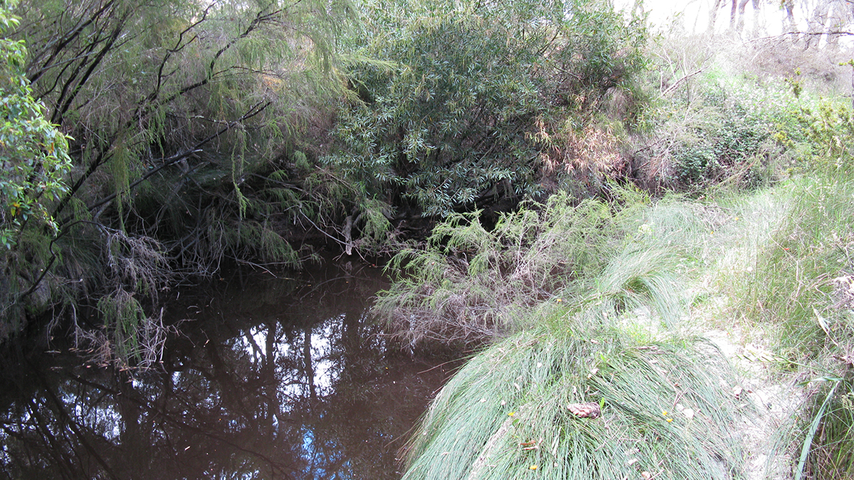 King River, Kalgan River catchment