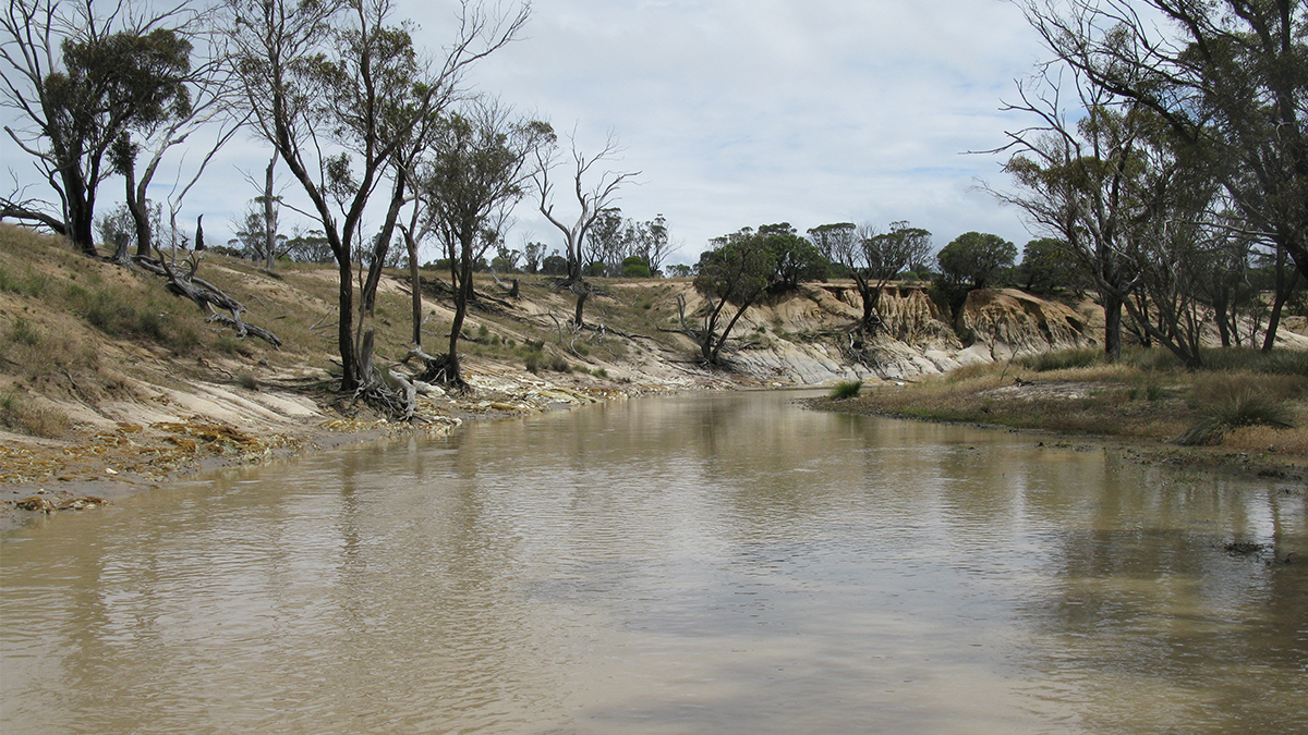 Peniup Creek