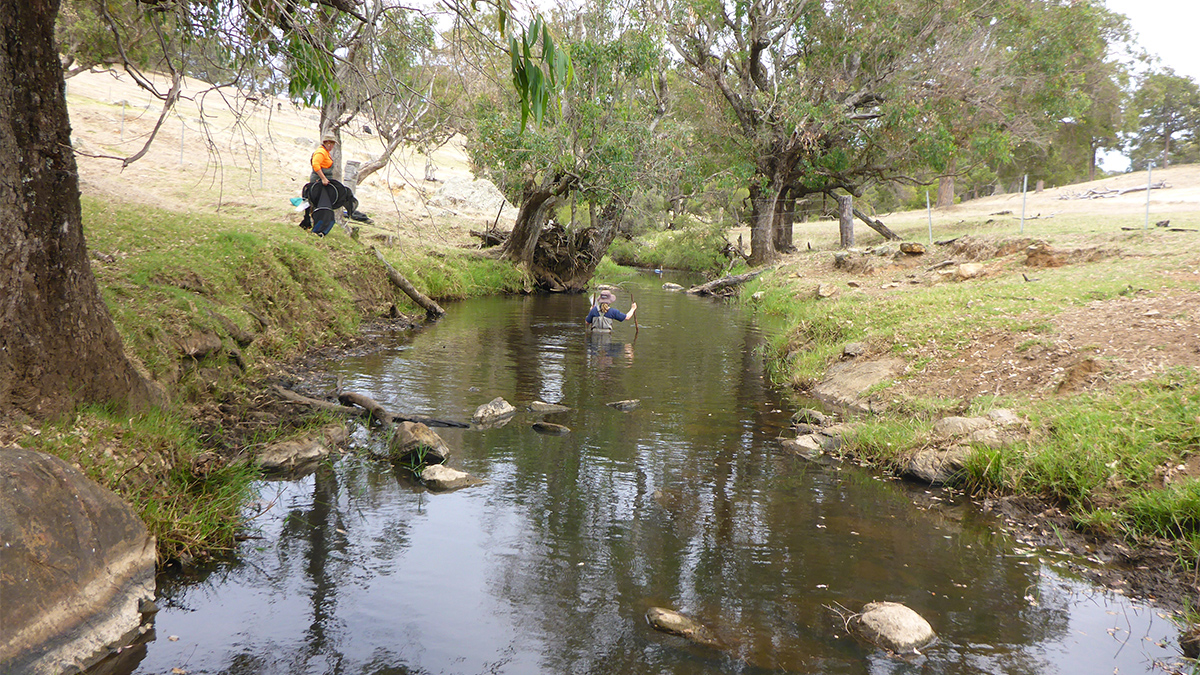 Wokalup Creek