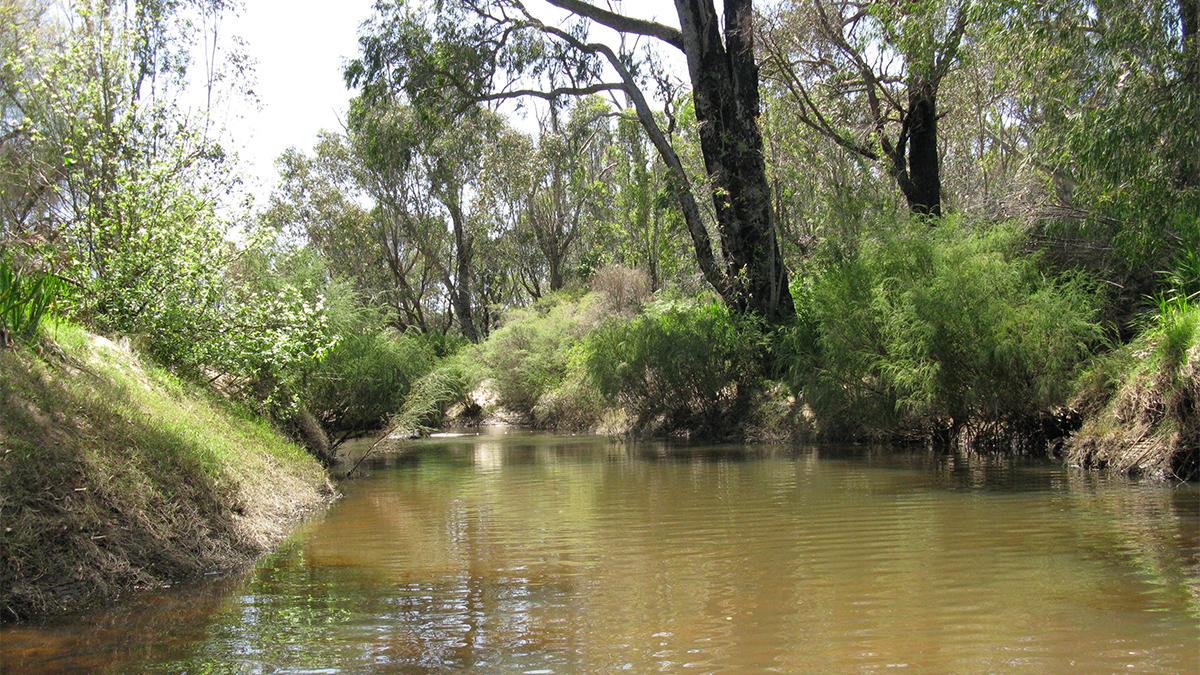 Preston River