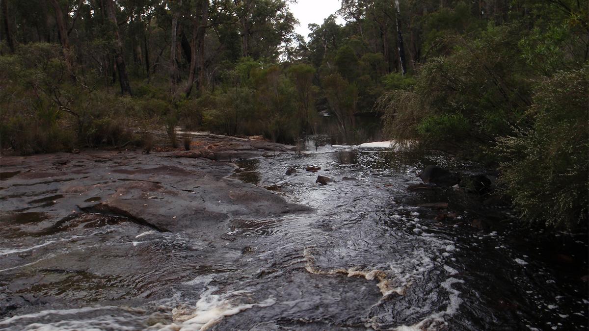 Weld River