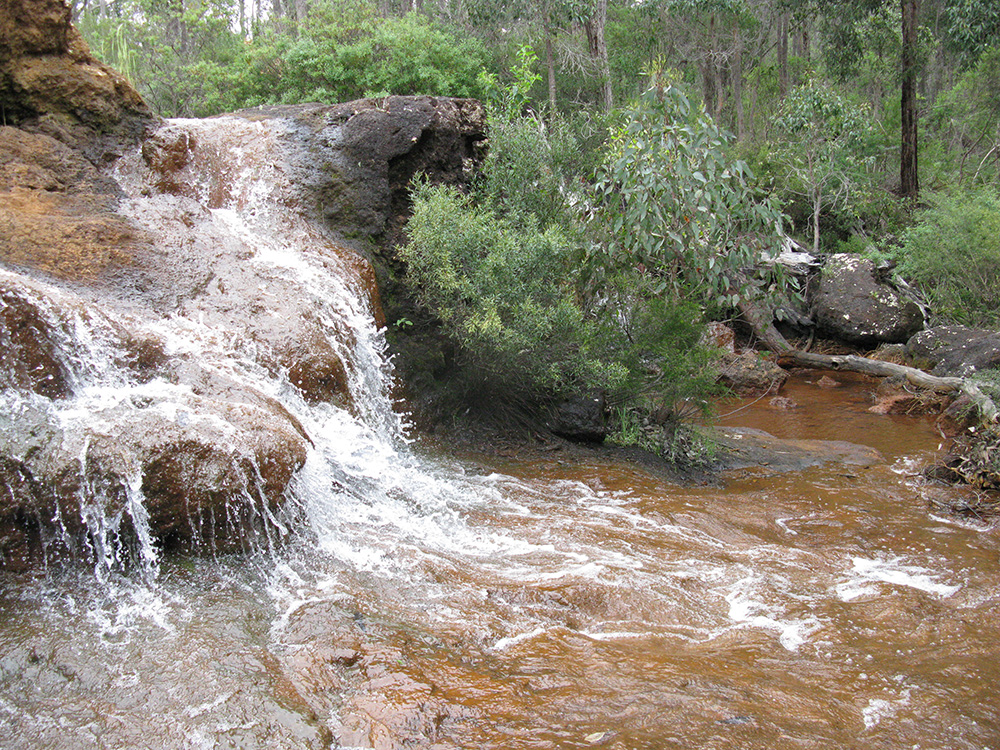 Capel River