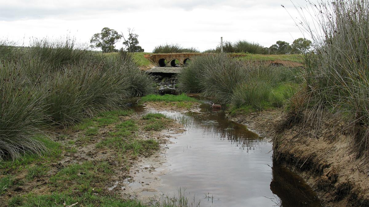 Minyulo Brook