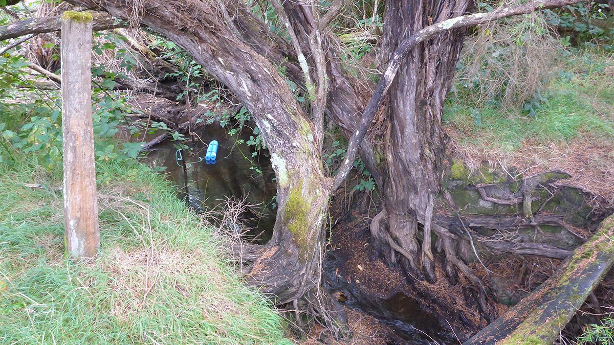 Treen Brook